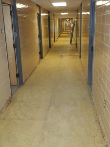Carpet removed from hallways in Biever Hall
